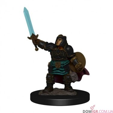 Female Dwarf Paladin - D&D Icons of the Realms Premium Figures