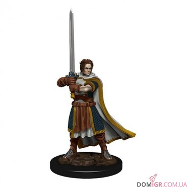 Male Human Cleric - D&D Icons of the Realms Premium Figures