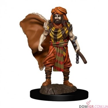 Male Human Druid - D&D Icons of the Realms Premium Figures