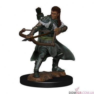 Male Human Ranger - D&D Icons of the Realms Premium Figures