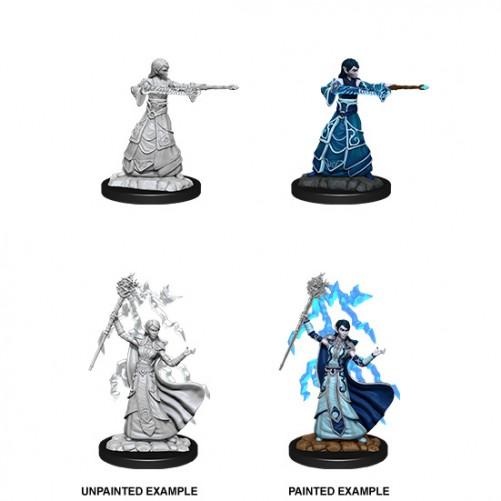 Female Elf Wizard - D&D Nolzur's Marvelous Miniatures - W12