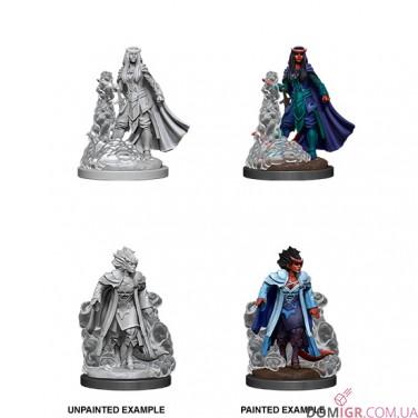 Female Tiefling Sorcerer - D&D Nolzur's Marvelous Miniatures - W12