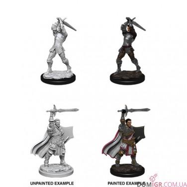 Male Human Paladin - D&D Nolzur's Marvelous Miniatures - W12
