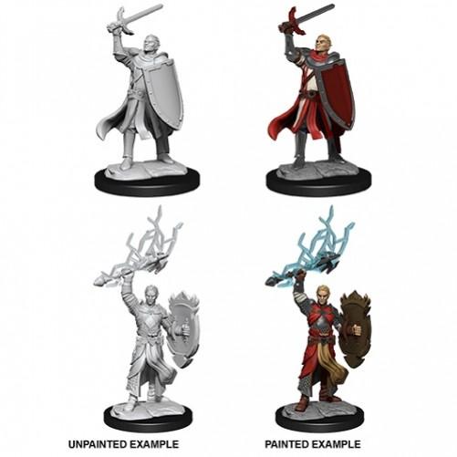 Male Half-Elf Paladin - D&D Nolzur's Marvelous Miniatures - W14