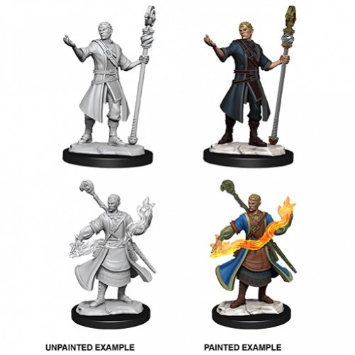 Male Half-Elf Wizard - D&D Nolzur's Marvelous Miniatures - W14
