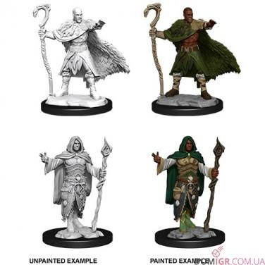 Male Human Druid - D&D Nolzur's Marvelous Miniatures - W14