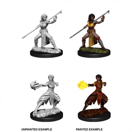 Female Half-Elf Monk - D&D Nolzur's Marvelous Miniatures - W10