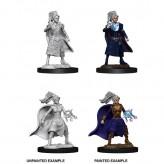 Female Human Sorcerer - D&D Nolzur's Marvelous Miniatures - W10