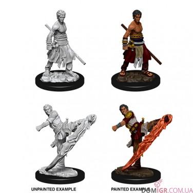 Male Half-Elf Monk - D&D Nolzur's Marvelous Miniatures - W10