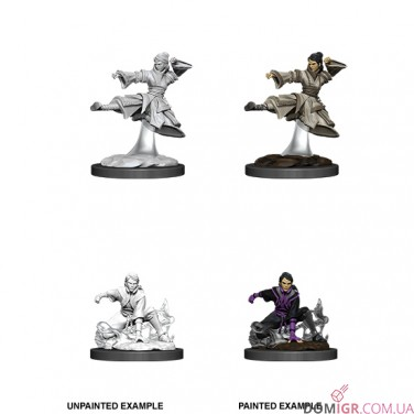 Female Human Monk - D&D Nolzur's Marvelous Miniatures - W11