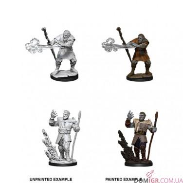 Male Firbolg Druid - D&D Nolzur's Marvelous Miniatures - W11