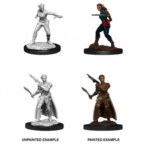 Female Shifter Rogue - D&D Nolzur's Marvelous Miniatures - W13