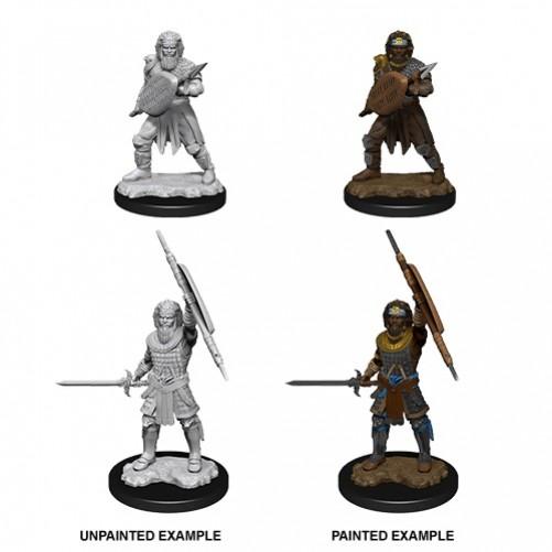 Male Human Fighter - D&D Nolzur's Marvelous Miniatures - W13