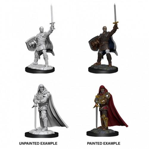 Male Human Paladin - D&D Nolzur's Marvelous Miniatures - W13
