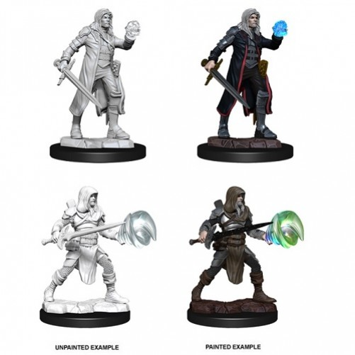 Multiclass Male Fighter + Wizard - D&D Nolzur's Marvelous Miniatures - W13