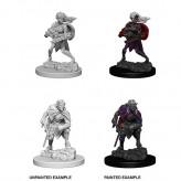 Drow - D&D Nolzur's Marvelous Miniatures - W4