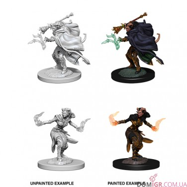 Female Tiefling Warlock - D&D Nolzur's Marvelous Miniatures - W6