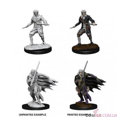 Male Elf Rogue - Pathfinder Deep Cuts - W10