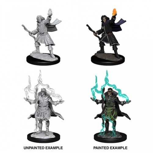 Male Elf Sorcerer - Pathfinder Deep Cuts - W14