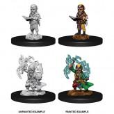 Male Gnome Sorcerer - Pathfinder Deep Cuts - W9