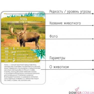 Секреты Планеты: Животные Европы