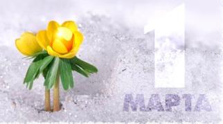 Поздравляем с весной! Плюс фотоотчет о февральской акции