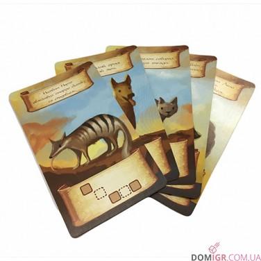 Во сне и наяву: набор промо-карт (5 шт.)
